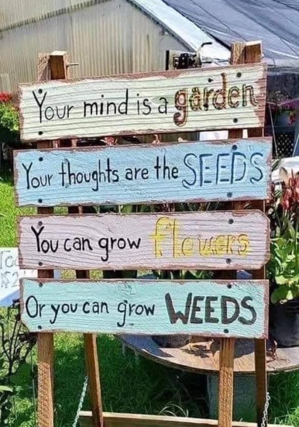 Garden of Beliefs
